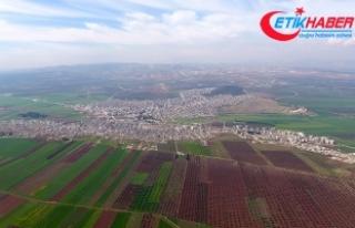 Afrin'de merkezin kuşatılmasına 1,5 kilometre...