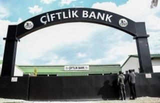 Bakan Fakıbaba'dan 'Çiftlik Bank'...