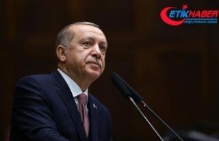 Erdoğan: Zeytin Dalı Harekatı'nda 3213 terörist...
