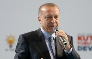 Cumhurbaşkanı Erdoğan: Ne çektirdiler