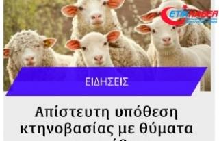 Güney Kıbrıs'ta koyun ve keçilere tecavüzden...