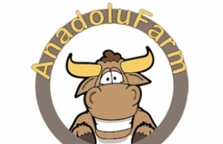 İkinci Çiftlik Bank vakası: Anadolu Farm