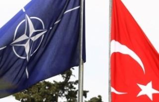 'NATO Türkiye'yi terörle mücadelede yalnız...