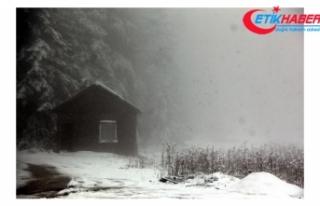 Bolu'da nisan karı