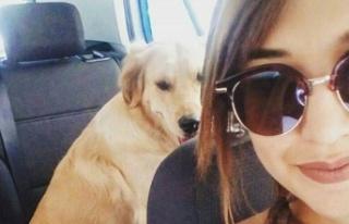 Ayrılan sevgililer köpek için mahkemelik oldu