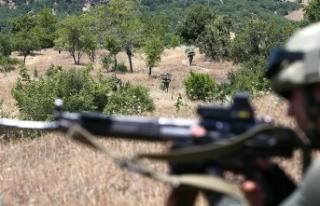 Diyarbakır'da terör örgütü PKK'ya yönelik...