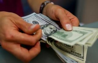 TL'nin dolar karşısındaki değerlenme eğilimi...