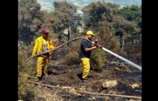 Kuyucak'taki yangında 25 hektarlık alan zarar...