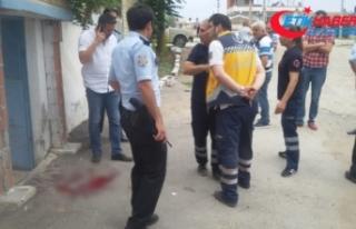Polisin uyuşturucu operasyonunda pitbull dehşeti