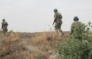 Şırnak'ta PKK'lı terörist yakalandı