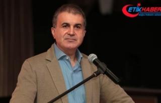 AB Bakanı Çelik: Avusturya Başbakanı ırkçılığın...