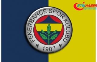 Fenerbahçe'nin 2018 bütçesi kabul edildi