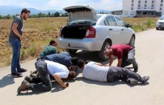 Otomobile giren yılanın çıkması için denemedikleri...