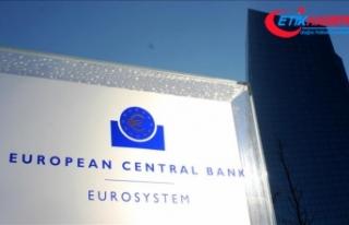 Avrupa Merkez Bankası'ndan yeni karar beklenmiyor