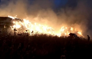 California'daki yangında bir buldozer operatörü...