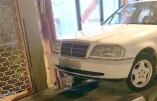Kahvehaneye giren pitbull 2 kişiyi yaraladı
