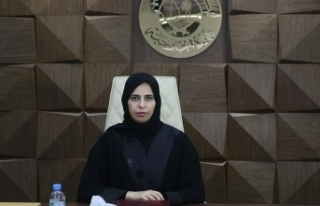 'Katar'ın amacı BAE ile krizi tırmandırmak...