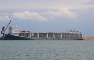 Uruguay'dan gelen 20 bin hayvan yüklü gemi...
