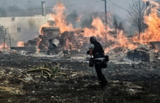 Yunanistan'daki yangınla ilgili 'kundaklama...