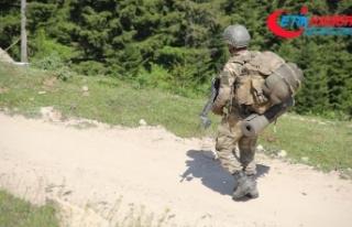 'Bebek katili' PKK'ya temmuzda ağır...