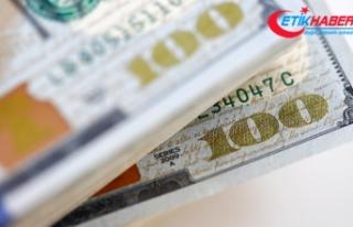 Dolar/TL, güne yükselişle başladı