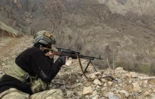 Erzurum'da 2 terörist etkisiz hale getirildi