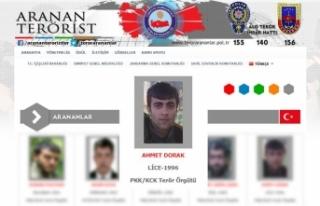 Gri listede aranan PKK'lı terörist etkisiz...