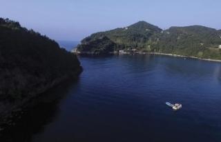 Karadeniz'in doğa harikası koyları ziyaretçilerini...