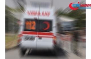 Safari minibüsü devrildi: 1 Çek turist öldü,...