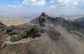 Şırnak'ta 5 PKK'lı terörist etkisiz...