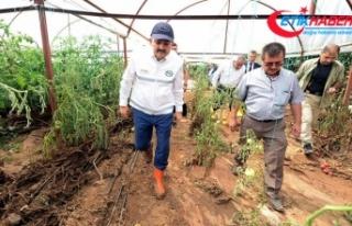 Tarım ve Orman Bakanı Pakdemirli: Devlet ne gerekiyorsa...