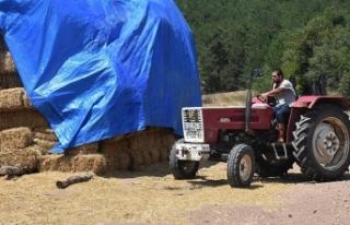 AVM yöneticisi köyünde hayvancılığa başladı
