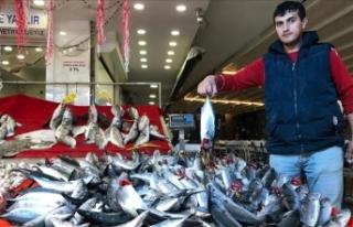 'Kestane karası fırtınası' balık fiyatlarını...