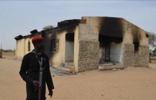 'Saldırılar Boko Haram'ın çabuk toparlandığını...