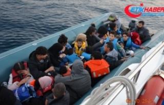 """""""574 göçmen yakalandı, 8 göçmenin cansız..."""