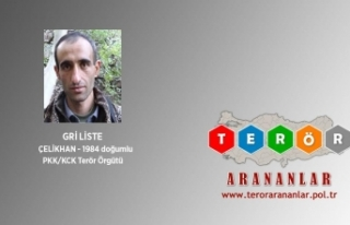 Gri listedeki terörist ölü olarak ele geçirildi