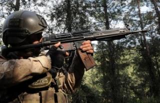 Muş'ta 5 PKK'lı terörist etkisiz hale...