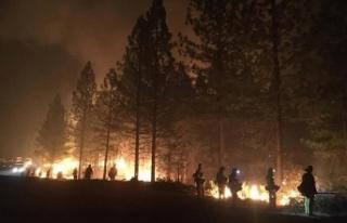 California'daki yangında hayatını kaybedenlerin...
