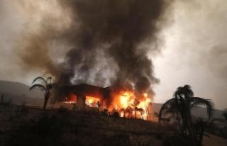 California'daki yangında ölenlerin sayısı...
