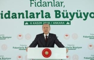 Cumhurbaşkanı Erdoğan: Tabiata bakış açımızı...