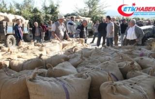 TMO 2 bin ton fındık aldı