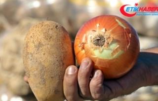 Tüketiciye patates ve soğandan bir kötü haber...
