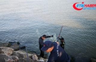 2018'de yasa dışı avcılık yapanlara ceza yağdı