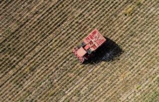 'Çiftçilerin yüzde 82'si Hazine arazilerine...