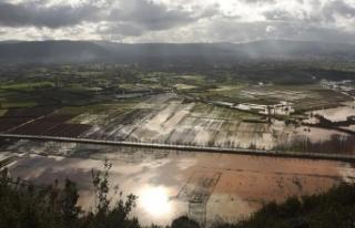 Muğla'da sağanak nedeniyle tarım arazileri...