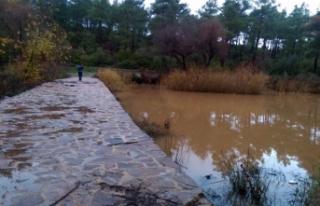 Mumcular Barajı'nı besleyen derede kaçak su...