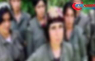 PKK, hamile kalan teröristi infaz etti