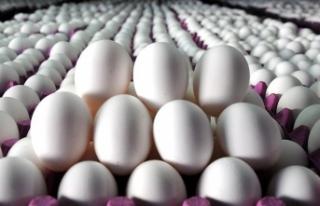 Devlet başkanı yardımcısının yumurtalarını...