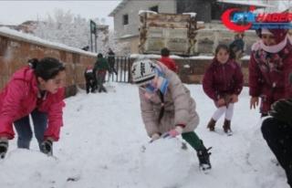 Van ve Bingöl'de eğitime kar engeli