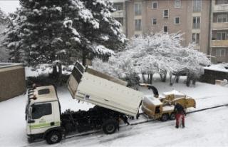 Almanya'da yoğun kar hayatı olumsuz etkiliyor